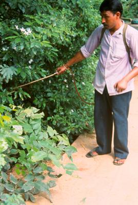 report pesticide
